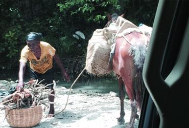 haiti-place-4